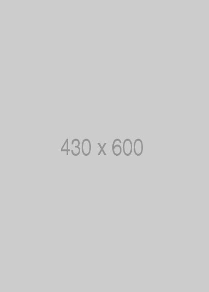 Pin 430x600
